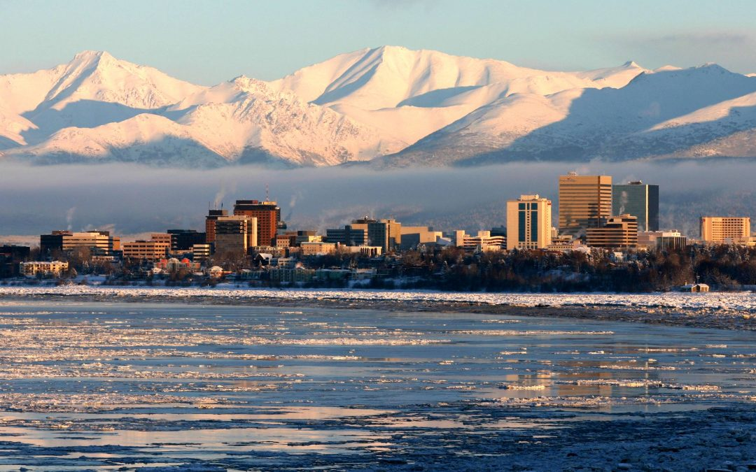 Which Grocery Delivery Services are Available in Alaska?