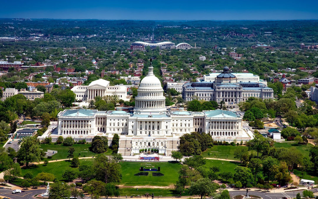 Which Restaurant & Meal Delivery Services are Available in Washington, DC?